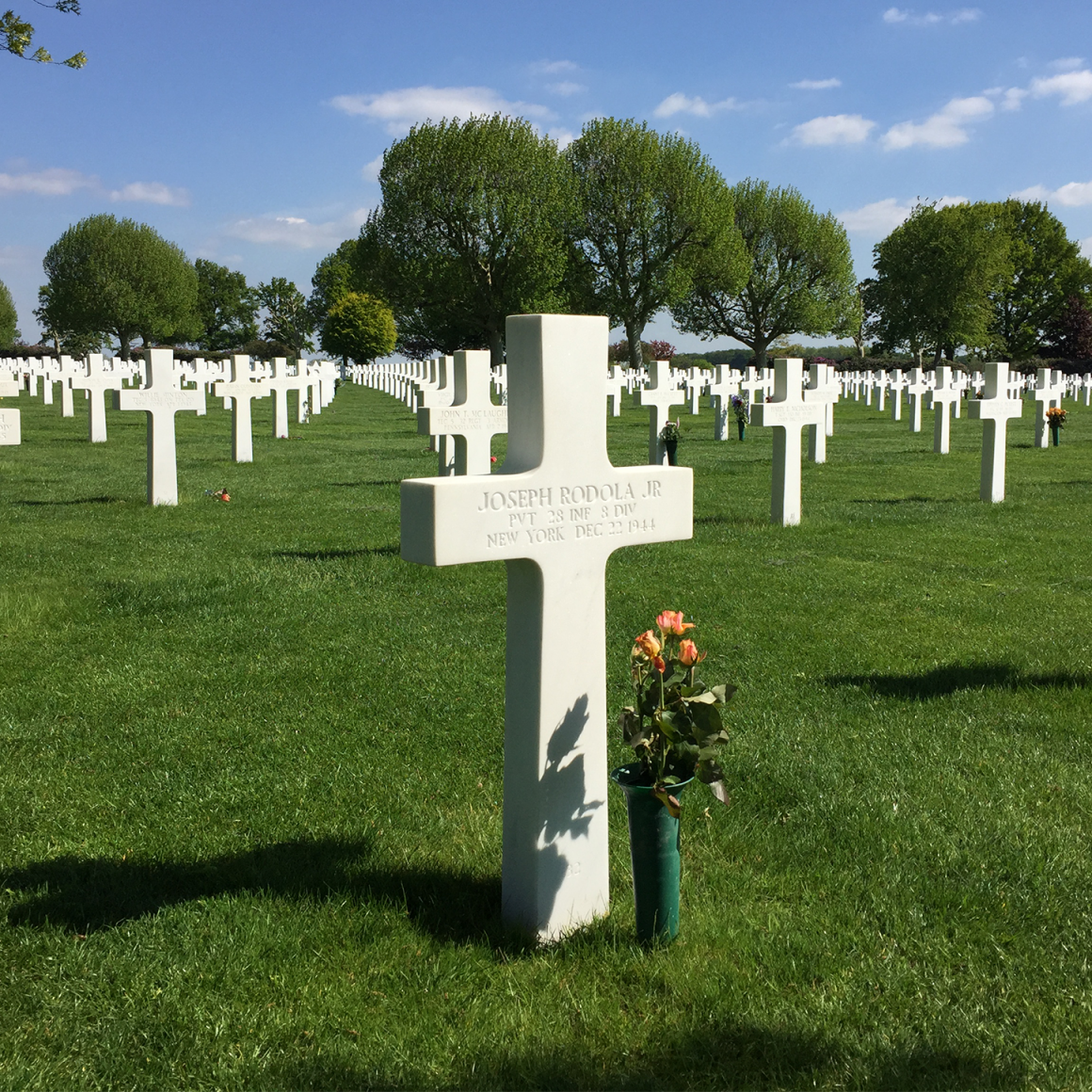 Cemetery with crosses in Rhine